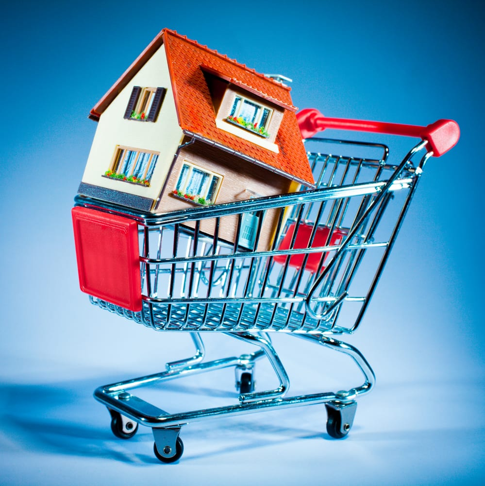 [house in a shopping cart]