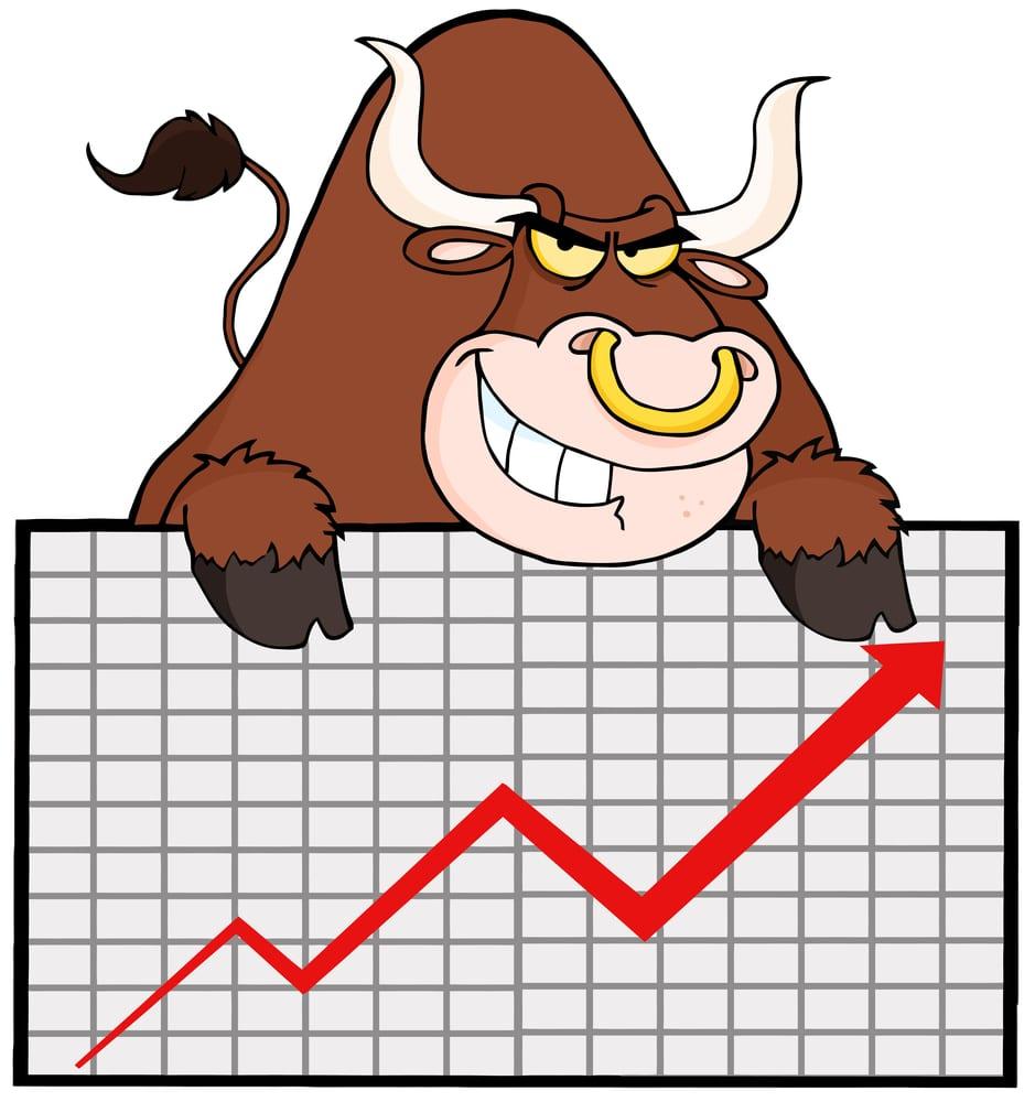 [Bull Market]